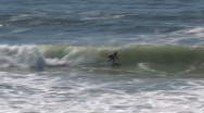 Stock Video Footage of Surfing Westcoast, California, United States