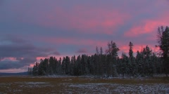 Magenta Sunset over Pines in Snow - stock footage