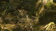 Wasser18 Stock Footage