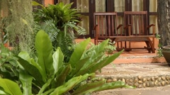 Resort with tropical garden with palms - HD 1920X1080 Stock Footage