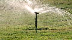 Sprinkler watering green lawn Stock Footage