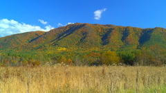 Grassy field and autumn mountain Stock Footage