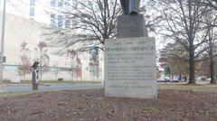 Martin Luther King Statue, Charlotte, NC wide Stock Footage