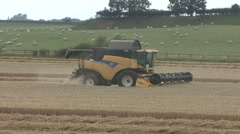 New Holland combine harvester on wheat. Stock Footage