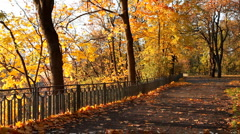Autumn park - stock footage