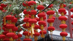 Chinese Lantern Stock Footage