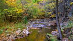 Mountain creek autumn 02 Stock Footage