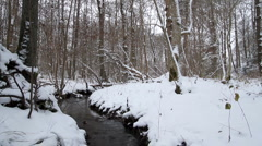 Snow-covered forest and stream Stock Footage