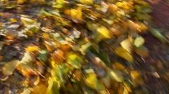 Kicking Crunching Fall Leaves  Stock Footage