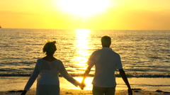 Retired Couple Watching the Sunset Stock Footage