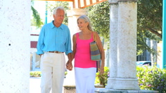 Seniors Enjoying Retirement Leisure - stock footage