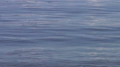 Calm water background  Stock Footage