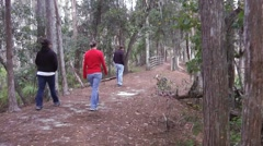 Young adults walking on wooded trail with dog Stock Footage