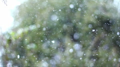 Snowing Slow-Motion HD Stock Footage