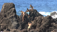 Hawaii Kids on rocks at Laupahoehoe  - stock footage