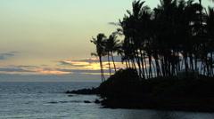 Hawaii Kona coast palms sea sunset - stock footage