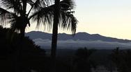 Hawaii Palms and Mauna Kea Stock Footage