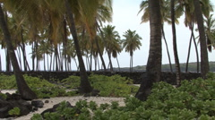 Hawaii Pans wall Place of Refuge  Stock Footage