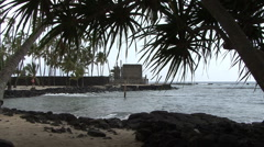 Stock Video Footage of Hawaii Place of Refuge with leaves 2