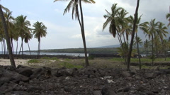 Hawaii Wall at Place of Refuge 4 Stock Footage