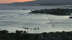 Honolulu evening palms by bay Stock Footage