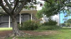 Honolulu Hawaii State capital and tree 2 Stock Footage