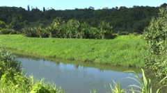 Stock Video Footage of Kauai Canal 2