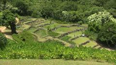Kauai Tourists climb ancient stone terraces Stock Footage