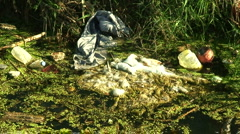 Rubbish dumped in stream 3 Stock Footage