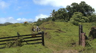 Maui Hikers climb hill and scare cow  Stock Footage