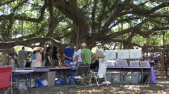 Maui Lahaina Market under a banyon tree  Stock Footage