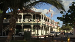 A palm frames an historic building Stock Footage