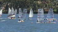 Maui Lahaina windsurfers sailing 2 Stock Footage