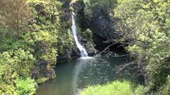 Pool and waterfall Hana road  Stock Footage