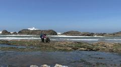 Oregon coast exploring tide pools 4 Stock Footage