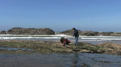 Oregon coast looking at tide pools 2 Stock Footage