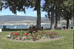Sicamous BC park with flowers Stock Footage