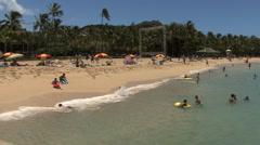 Waikiki sandy beach with palms  Stock Footage