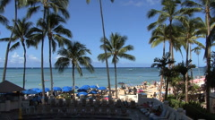 Waikiki beach umbrellas and palms  Stock Footage