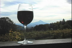 Glass of red wine  Stock Footage