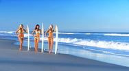 Beautiful Girls Modeling with Surf Boards Stock Footage