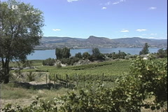 Zooms on Lake Okanagan Stock Footage