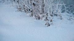 Frozen ground Stock Footage