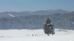 HD: Panoramic View Of People Cross-Country Skiing On A Sunny Day Stock Footage