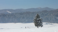 Stock Video Footage of HD: Panoramic View Of People Cross-Country Skiing On A Sunny Day