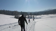 Stock Video Footage of HD: Cross-Country Skiing Down The Slope
