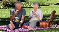 Old woman feasting at a picnic with her husband on the grass Stock Footage