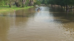 CAMBODIA-DRAGON BOATS-WATER FESTIVAL 1 Stock Footage