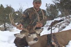 Arizona Mule Deer Hunting Stock Footage