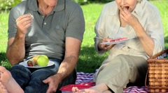 Elderly wife feasting at picnic with her old husband Stock Footage